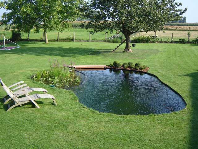 Producten waterkwaliteit vijver for Tuinvijver maken